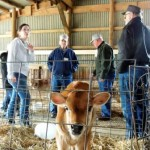 AFHM at Marcoot Jersey Creamery