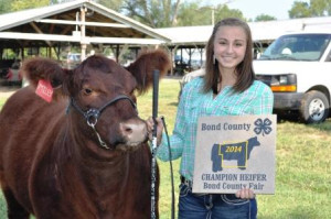 Maddey Tebbe with her Champion Heifer