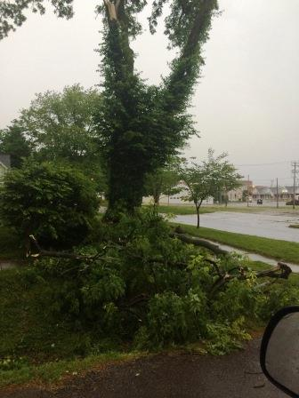 A listener shared this photo of a large tree limb down at Bicentennial Park in Greenville