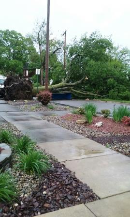 A listener submitted this photo of a tree down at 12th & Washington in Highland