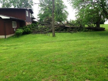 N of Mulberry Grove 2