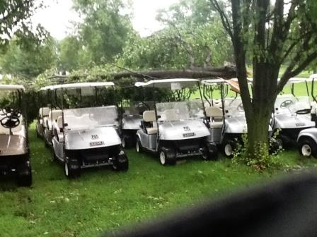 A limb fell on some golf carts at the Greenville Country Club