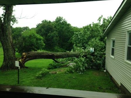 Kenda Hootselle sent this photo from north of Greenville on Bohle Trail
