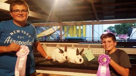 Gr Ch Rabbit Meat Rabbit Logan Snow and Rs Ch Levi Siebert